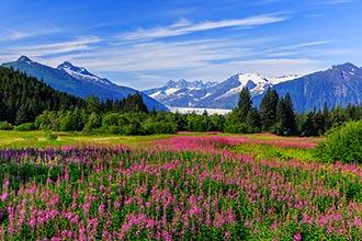 Photo of Big Ten Cruise: Vistas & Glaciers of Alaska ~ Seattle to Seattle