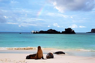 Photo of The Galapagos Islands